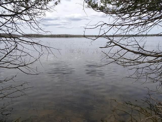 TBD Lot 4 Echo Pine Trail Ne, Remer Twp, MN 56672 (#5675774) :: Tony Farah | Coldwell Banker Realty