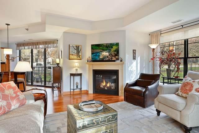 317 Groveland Avenue #103, Minneapolis, MN 55403 (#5678375) :: Straka Real Estate