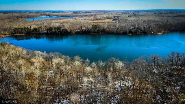 TBD Moose Trail, Lake Alice Twp, MN 56461 (#5678621) :: Lakes Country Realty LLC