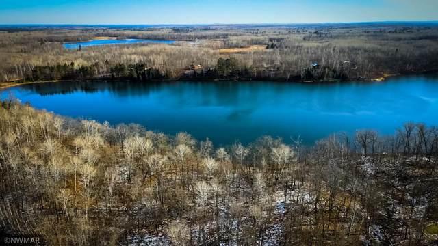 TBD Moose Trail, Lake Alice Twp, MN 56461 (#5678621) :: The Michael Kaslow Team