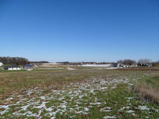 TBD Country Hills Estates, Racine, MN 55967 (#5678759) :: Holz Group