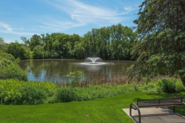 215 Barry Avenue S #219, Wayzata, MN 55391 (#5679589) :: Bos Realty Group