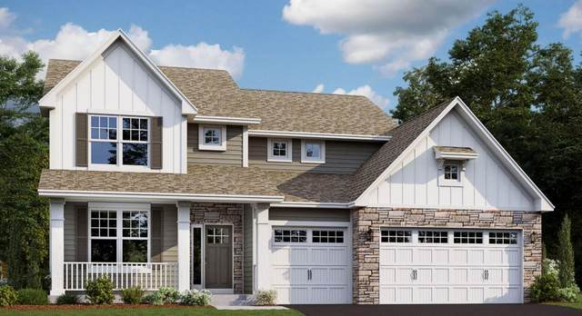 11240 Meadow View Lane, Rogers, MN 55311 (#5679954) :: Bre Berry & Company