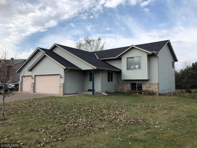 38668 Holm Avenue, North Branch, MN 55056 (#5681044) :: The Janetkhan Group