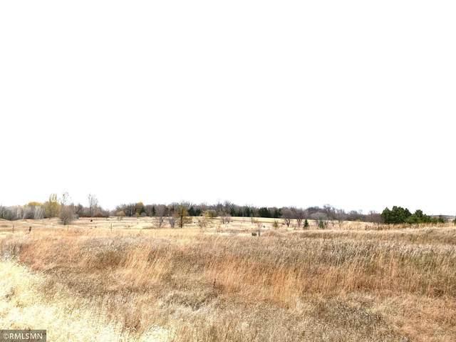 18987 Hidden Acres Loop N, Pelican Rapids, MN 56572 (#5682525) :: The Pietig Properties Group