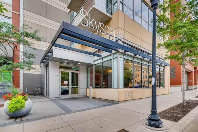 929 Portland Avenue #410, Minneapolis, MN 55404 (MLS #5683341) :: RE/MAX Signature Properties