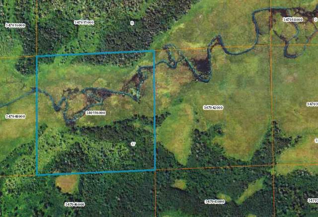 TBD Indian Creek Road, Osage, MN 56570 (#5685235) :: Lakes Country Realty LLC