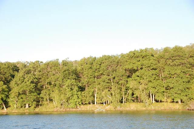 TBD Lot A Eaglewood Dr, Deerwood, MN 56444 (#5687392) :: The Pietig Properties Group