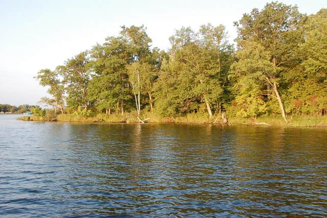 TBD Lot E Eaglewood Dr, Deerwood, MN 56444 (#5688062) :: The Pietig Properties Group