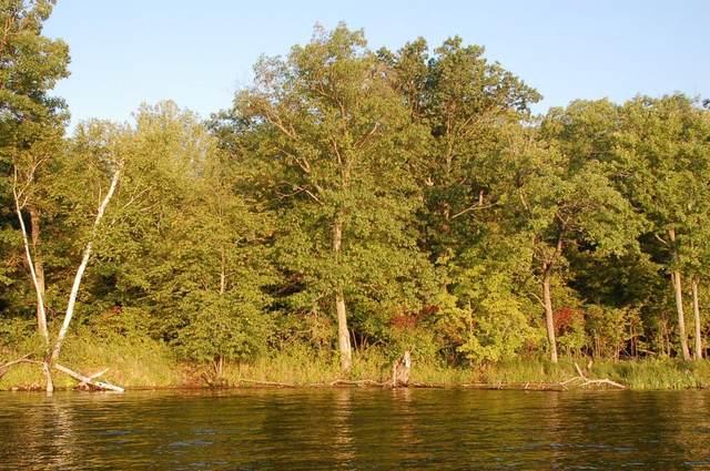 TBD Lot C Eaglewood Dr, Deerwood, MN 56444 (#5688066) :: The Janetkhan Group