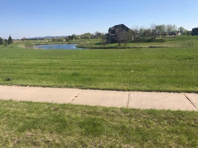 109 Emerald Lake Drive, Lake City, MN 55041 (#5688670) :: Servion Realty