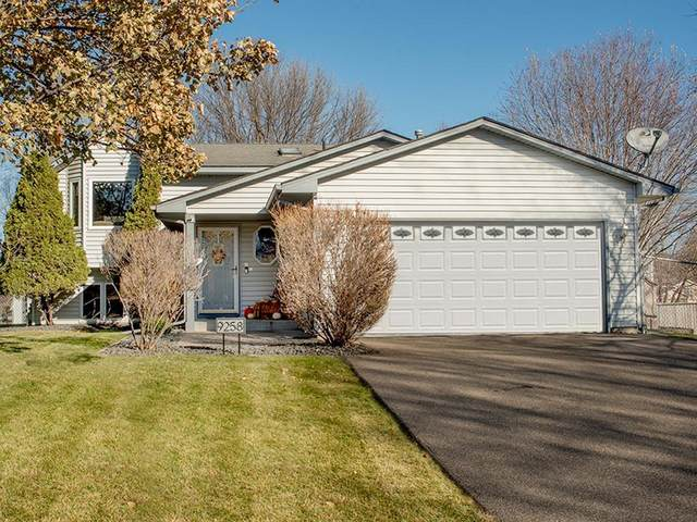 9258 93rd Street S, Cottage Grove, MN 55016 (#5689379) :: The Smith Team