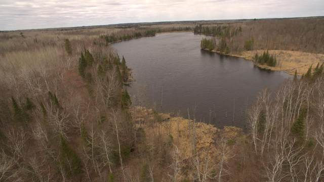 TBD Lot 3 Syrup Camp Trail, Bigfork, MN 56628 (#5689592) :: Happy Clients Realty Advisors