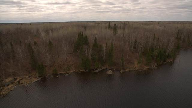 TBD Lot 2 Syrup Camp Trail, Bigfork, MN 56628 (#5689605) :: Happy Clients Realty Advisors