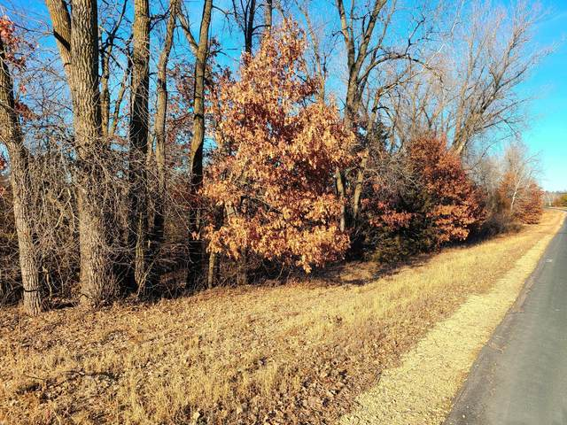 Lot 2 38th Street, Somerset, WI 54025 (#5690579) :: Bos Realty Group