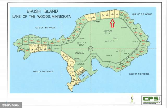 TBD Brush Island, Angle Twp, MN 56711 (#5692425) :: Holz Group