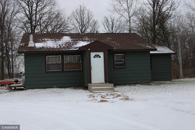 48142 County Road #3, Bemidji, MN 56601 (#5694202) :: The Pietig Properties Group