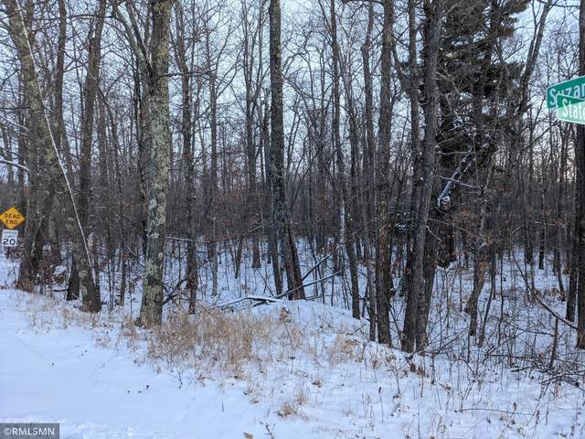 TBD State Highway 84, Longville, MN 56655 (#5695258) :: Happy Clients Realty Advisors