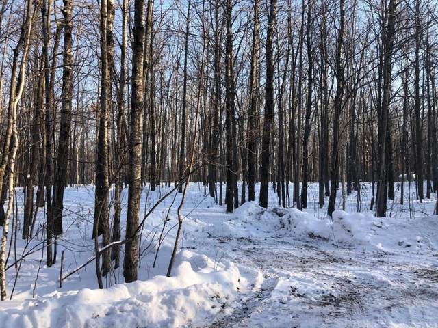 Lot 5 Leigh Drive, Bruno, MN 55712 (#5697112) :: Twin Cities South