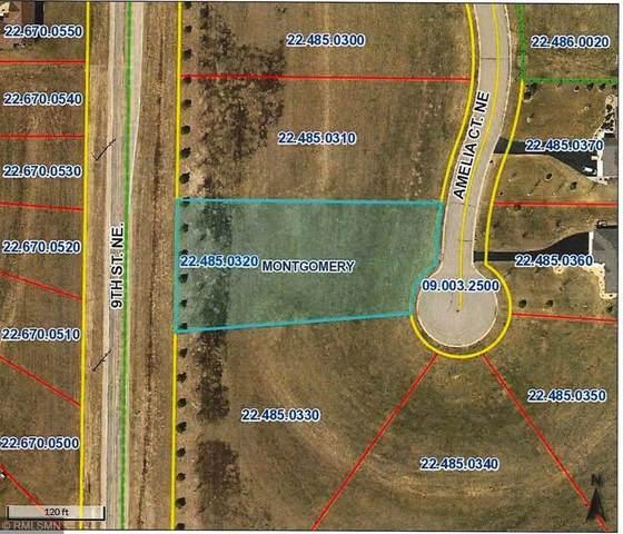 907 Amelia Court NE, Montgomery, MN 56069 (#5697739) :: Happy Clients Realty Advisors