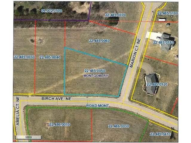 1017 Birch Avenue NE, Montgomery, MN 56069 (#5697741) :: Holz Group