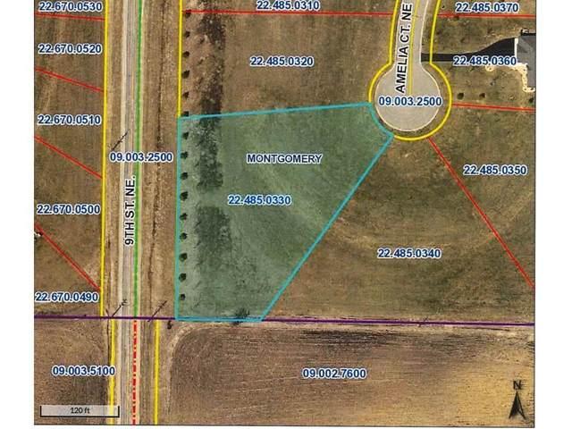 903 Amelia Court NE, Montgomery, MN 56069 (#5697744) :: Holz Group