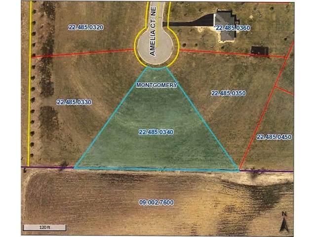 900 Amelia Court NE, Montgomery, MN 56069 (#5697746) :: Holz Group