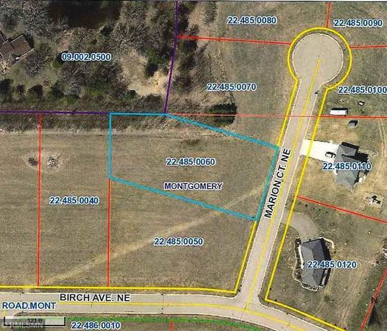 1005 Marion Court NE, Montgomery, MN 56069 (#5697748) :: Twin Cities Elite Real Estate Group | TheMLSonline