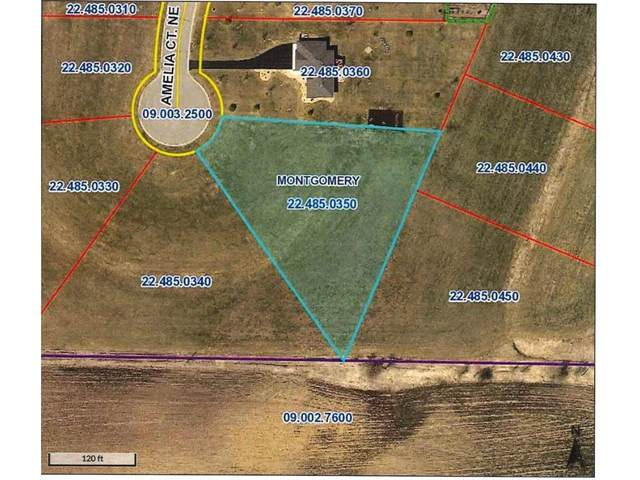 904 Amelia Court NE, Montgomery, MN 56069 (#5697749) :: The Twin Cities Team