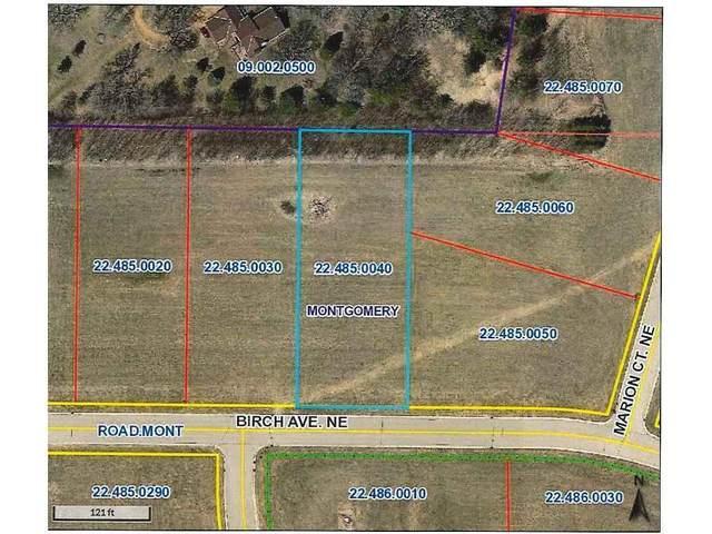 1013 Birch Avenue NE, Montgomery, MN 56069 (#5697764) :: Holz Group