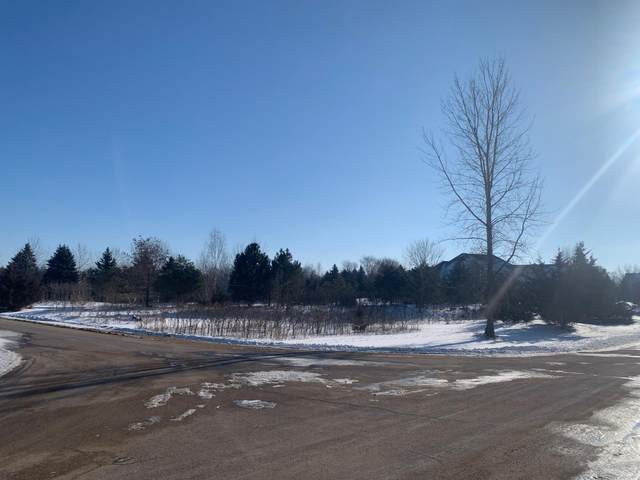Lot 8 Block 3, Mankato, MN 56001 (#5697968) :: Bos Realty Group
