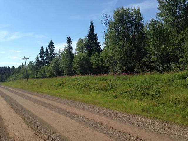 0 County Road 6, Grand Marais, MN 55604 (#5698410) :: Lakes Country Realty LLC