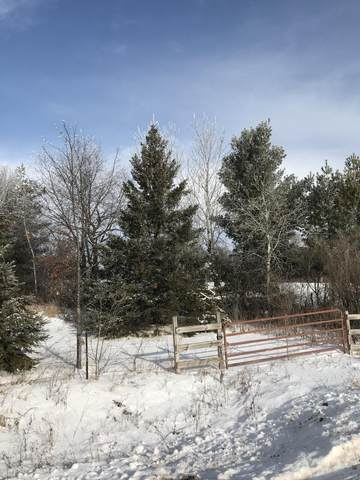 0 10 3/4, Prairie Lake Twp, WI 54728 (#5698647) :: Happy Clients Realty Advisors