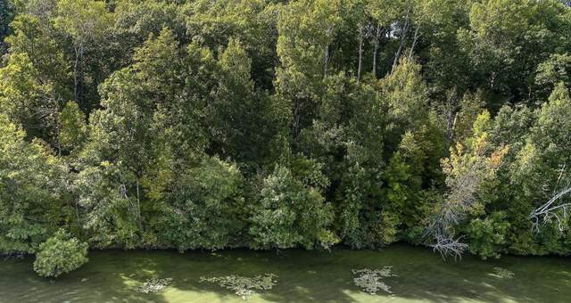 Lot 4 County Hwy F, Birchwood, WI 54817 (#5699583) :: Lakes Country Realty LLC