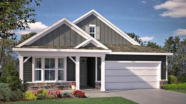 19363 Grass  Lake Trail, Rogers, MN 55374 (#5699881) :: Straka Real Estate