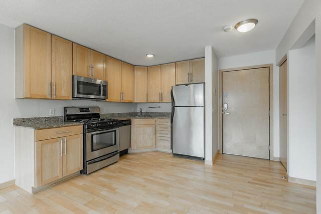 2530 1st Avenue S N202, Minneapolis, MN 55404 (MLS #5700559) :: RE/MAX Signature Properties