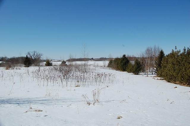 Lot 5 168th Street, Garfield Twp, WI 54009 (#5700639) :: Bos Realty Group