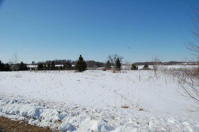 Lot 6 168th, Garfield Twp, WI 54009 (#5700699) :: Bos Realty Group