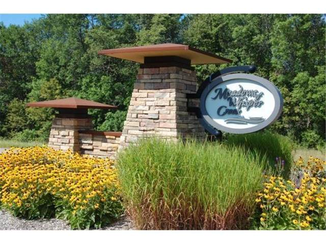 8993 Whisper Creek Trail, Greenfield, MN 55373 (#5700799) :: Holz Group