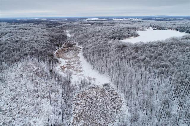 0 Two Bear Road, Rusk Twp, WI 54895 (#5701004) :: Bos Realty Group