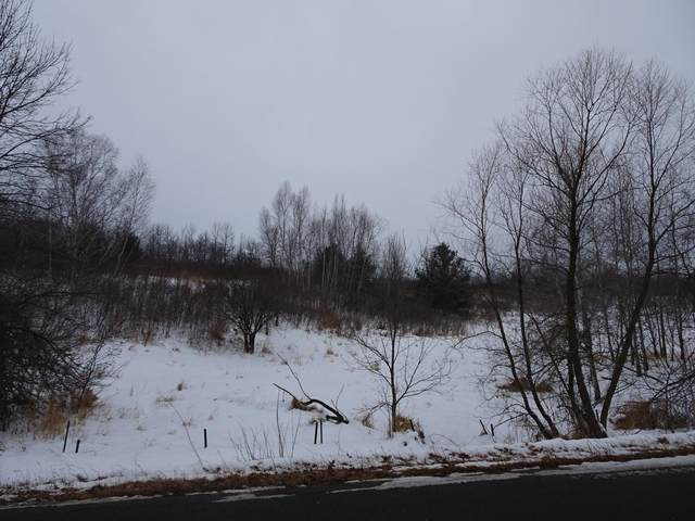 XXX 240th Avenue, Milltown, WI 54810 (#5701085) :: Lakes Country Realty LLC