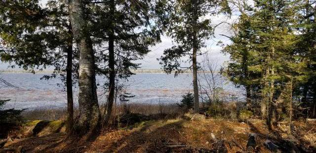 TBD South Steamboat Lake Rd Nw, Wilkinson Twp, MN 56633 (#5701121) :: Happy Clients Realty Advisors