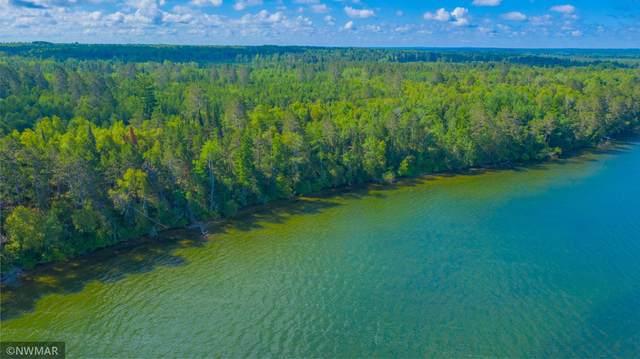 TBD Vahalla Lane, Cass Lake, MN 56633 (#5701136) :: Lakes Country Realty LLC