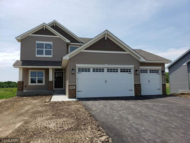 20091 Delta Street, Big Lake, MN 55309 (#5701803) :: Twin Cities South
