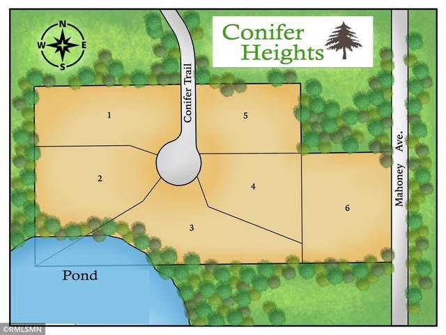 5533 Conifer Trail, Minnetonka, MN 55345 (#5701857) :: Tony Farah | Coldwell Banker Realty