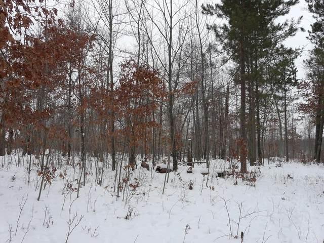 Lot 43 Deer Path Trailway, Danbury, WI 54830 (#5701933) :: Tony Farah | Coldwell Banker Realty