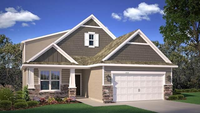 11596 Parkside Lane N, Champlin, MN 55316 (#5702092) :: The Pomerleau Team