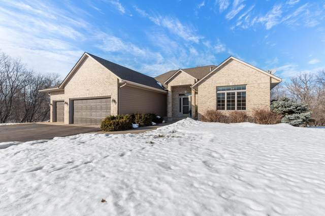 161 138th Avenue NW, Andover, MN 55304 (#5702436) :: Twin Cities Elite Real Estate Group | TheMLSonline