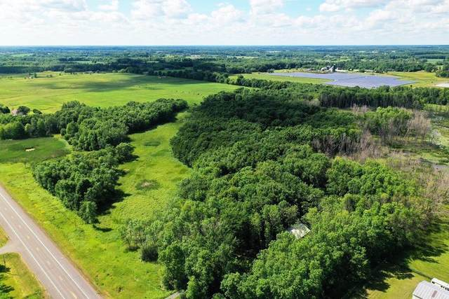 Xxxx Lake Boulevard, Shafer, MN 55074 (#5702905) :: Bos Realty Group