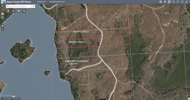 NORTH TRACT Enchanted Way, Bigfork, MN 56628 (#5702981) :: Tony Farah | Coldwell Banker Realty